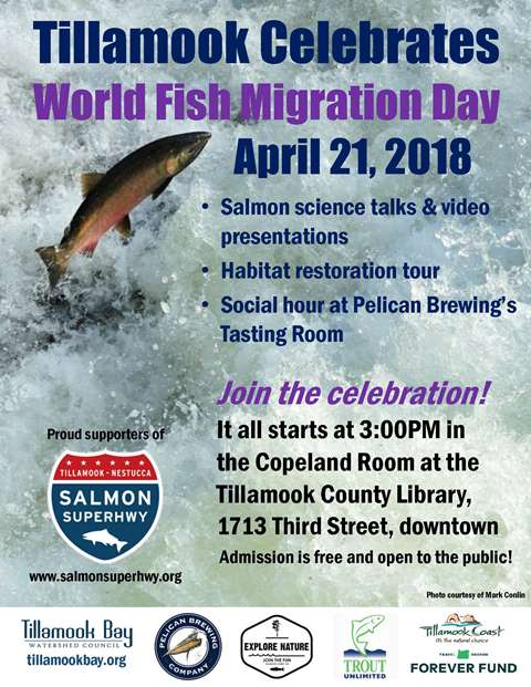 2018 World Fish Migration Day Poster