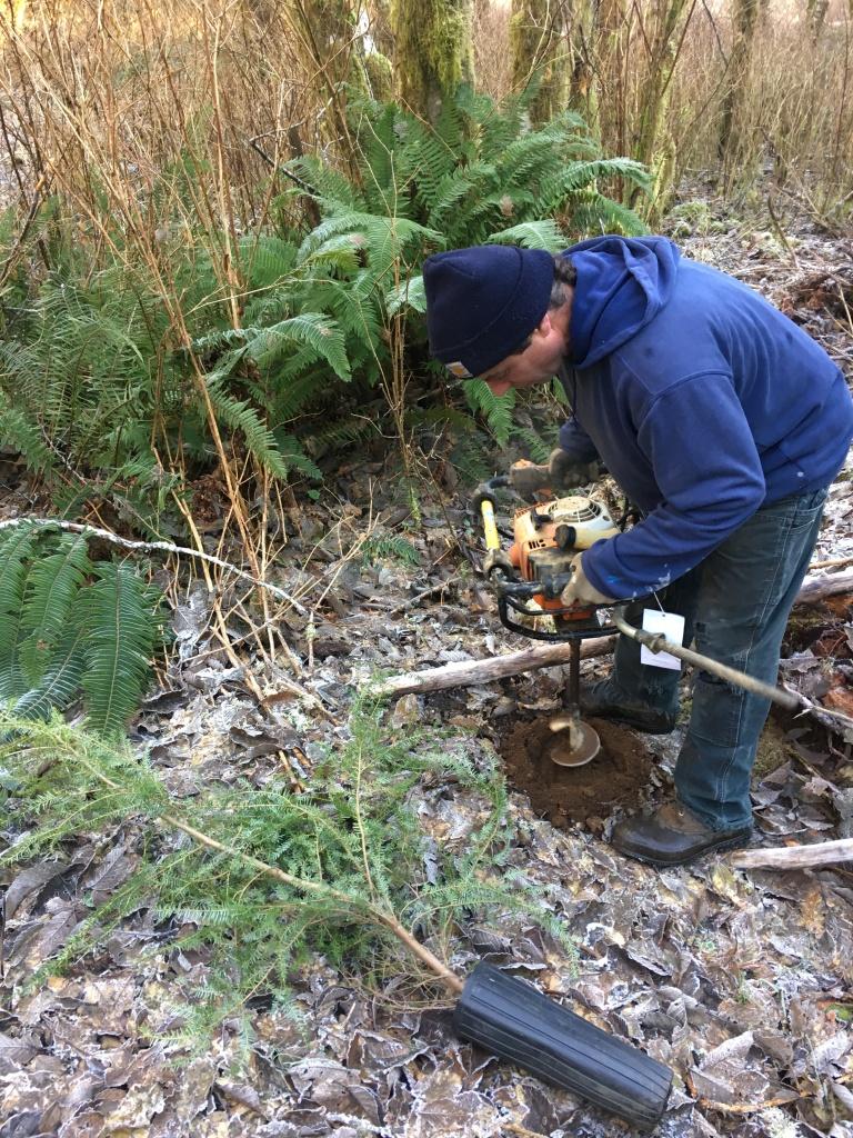 McDermott auger planting